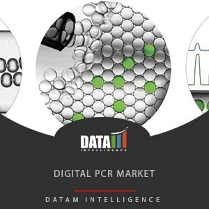 Digital PCR Market Size, Share and Forecast 2019-2026