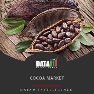 Cocoa Market