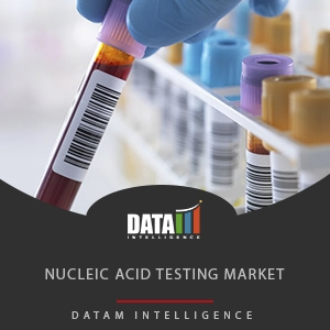 Nucleic Acid Testing Market Size, Share and Forecast 2019-2026